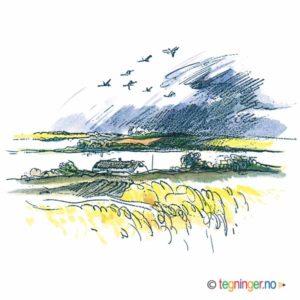 Høst landskap – NATUR