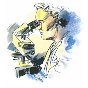 Forsker - YRKER