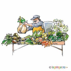 Grønnsakshandler – HØST