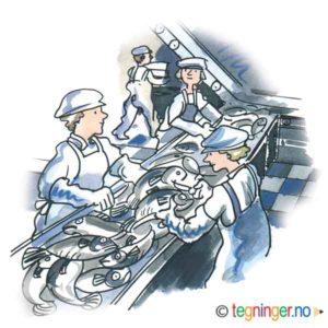 Fiskefabrikk – YRKER