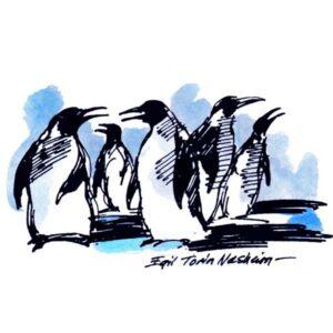 Pingviner – DYR