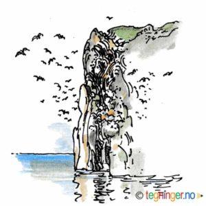 Fuglefjell – NATUR