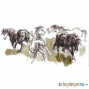 Hester på jordet – KLASSIKER