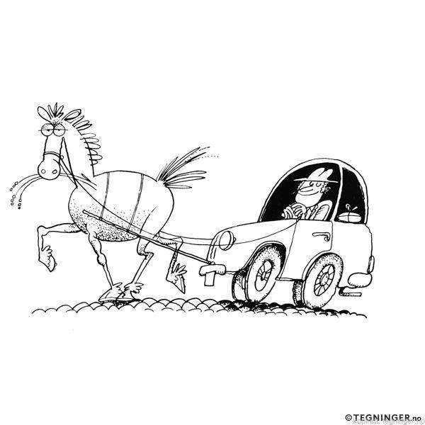 Hestekrefter - DYR