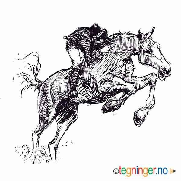 Rytter og hest - DYR