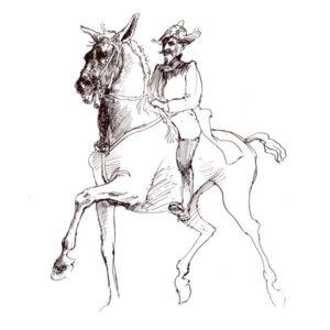 Hest og rytter – DYR
