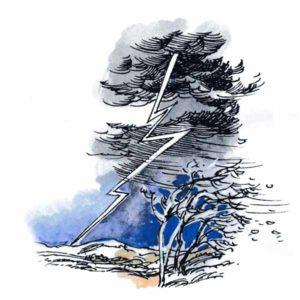 Lyn som slår ned – NATUR