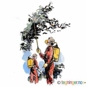 Lanbruk med sprøyting av trær – NÆRINGSLIV