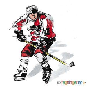 Ishockey – SPORT
