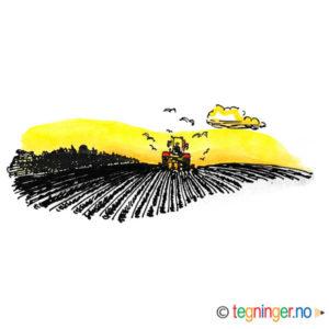 Traktor pløyer et jorde – NÆRINGSLIV