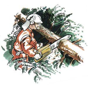 Skogsarbeider - YRKER