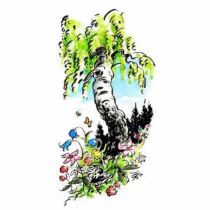 Bjørk i skogen - NATUR