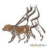 Førerhund - HELSE