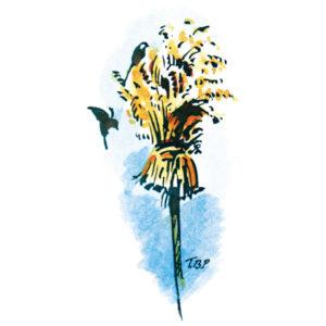 Fuglenek - JUL