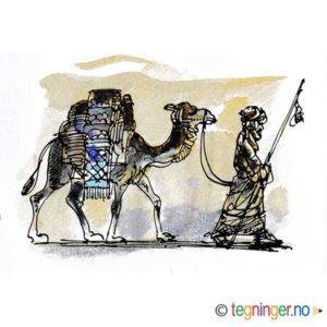 Kamel og beduin – JUL