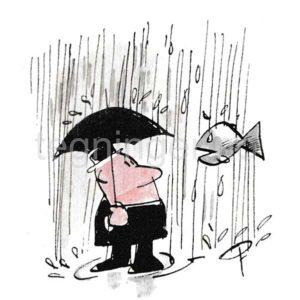 Regn - HØST