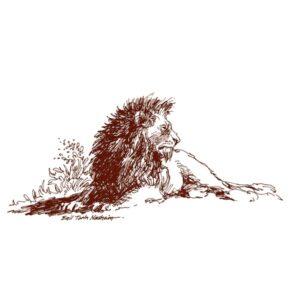 Løve – DYR