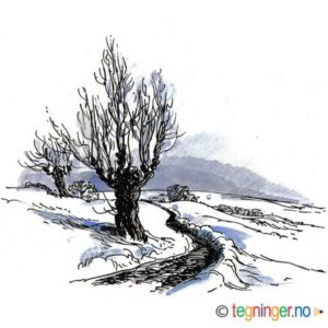 Natur med trær – VINTER