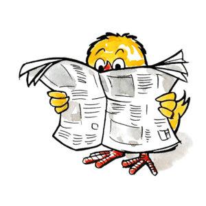 Påskekylling leser avis – PÅSKE