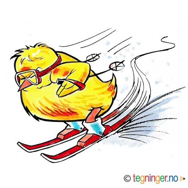 Påskekylling på slalomski – PÅSKE